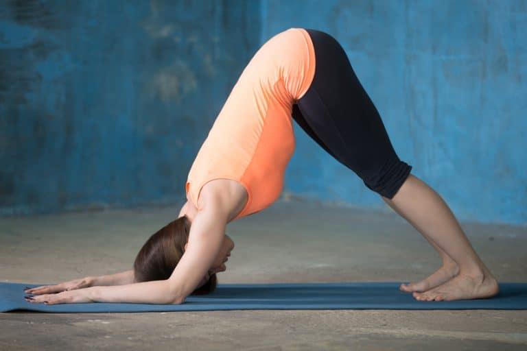 Yoga Delfin Pose