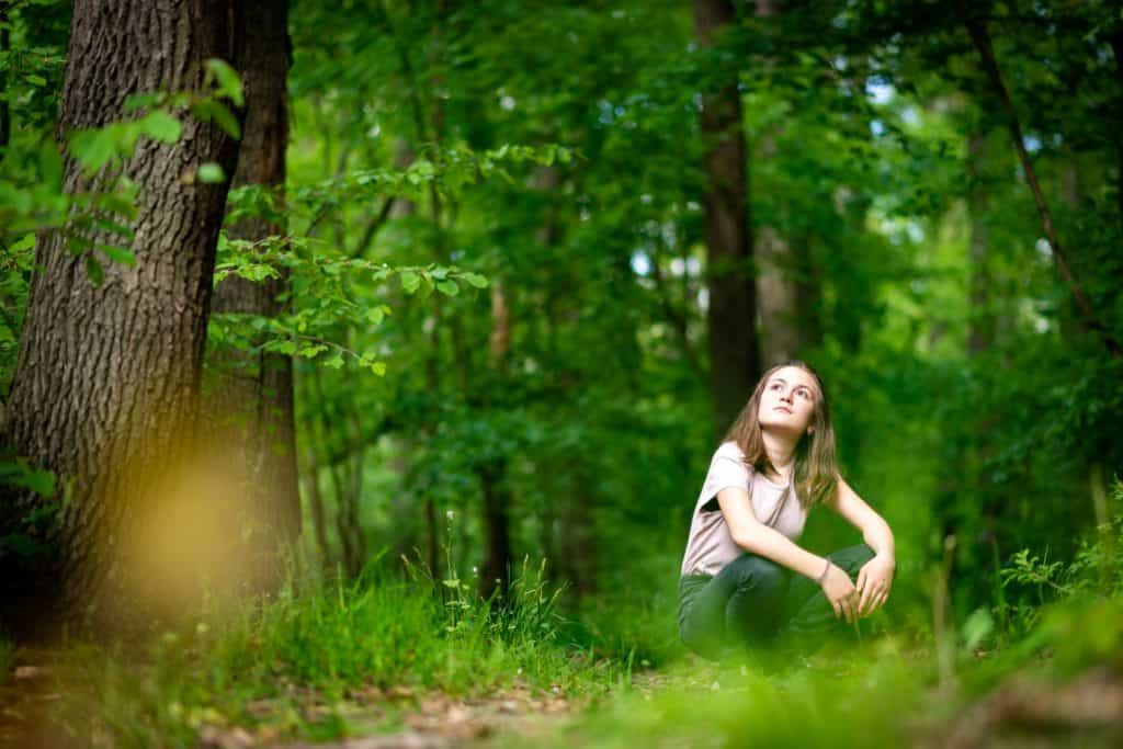 Wald Waldbaden European Ayurveda